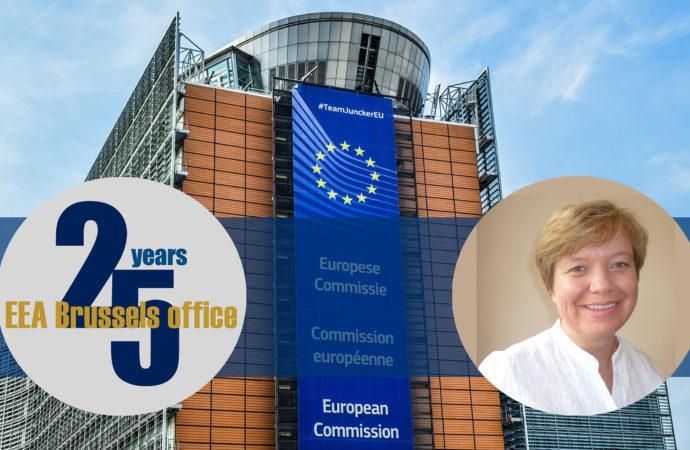 INTERVIEW | Julia Doxat-Purser on 25 years EEA Brussels Office
