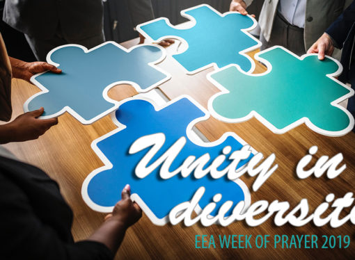 Discovering and celebrating diversity to build unity