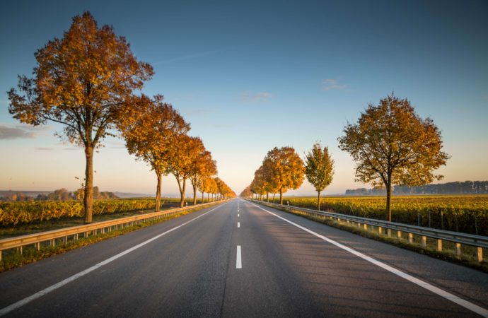 """""""On the road home: How to journey safely"""""""