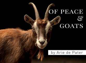 Of peace and goats